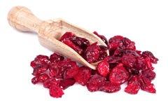 Slut upp av den torkade cranberryen arkivbild