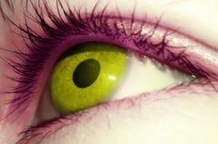 Slut upp av det gröna ögat Arkivbild