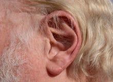 Slut upp av det mänskliga örat Arkivfoto