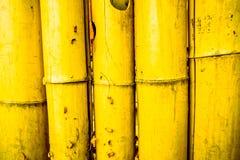 Slut upp av det målade utomhus- bambustaketet royaltyfri fotografi