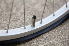 Slut upp av det plana cykelgummihjulet Royaltyfri Foto