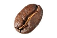 Slut upp av en enkel kaffeböna Arkivbild