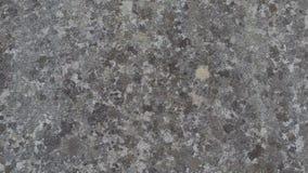 Slut upp av en gammal stenvägg arkivfoton