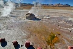 Slut upp av en geyser El Tatio Antofagasta region chile Arkivfoto