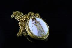 Slut upp av en guld- medaljong Royaltyfria Bilder
