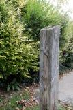 upp av en riden ut wood staketdörrstolpe med järn och overg Royaltyfria Bilder