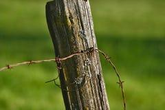 Slut upp av en staketstolpe med taggtråd Royaltyfri Fotografi