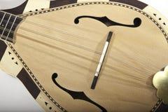 Slut upp av en traditionell mandolin Royaltyfria Bilder