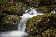 Slut upp av en vattenfall i Alva Glen Fotografering för Bildbyråer