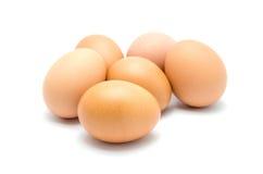 Slut upp av ett ägg  Arkivbild
