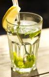 Slut upp av ett exponeringsglas av tea med en ny pepparmint Royaltyfria Bilder