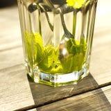 Slut upp av ett exponeringsglas av tea med en ny pepparmint Arkivfoton