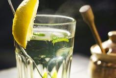 Slut upp av ett exponeringsglas av tea med en ny pepparmint Fotografering för Bildbyråer
