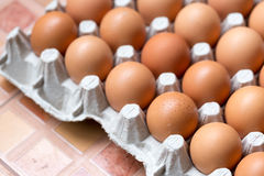 Slut upp av fega ägg i packe Arkivbilder