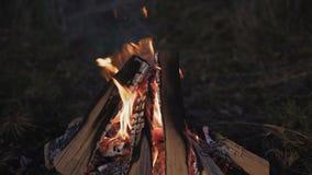 Slut upp av flammande lägereld 4K arkivfilmer