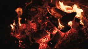 Slut upp av flammande lägereld 4K stock video