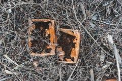 Slut upp av gamla rostiga cans Royaltyfri Foto