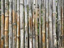 Slut upp av gammal bambubakgrundstextur fotografering för bildbyråer