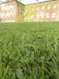 Slut upp av gräsmatta med den suddiga mangårdsbyggnaden Fotografering för Bildbyråer