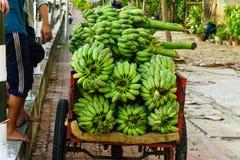 Slut upp av gröna bananer Fotografering för Bildbyråer