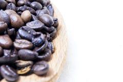 Slut upp av grillade kaffebönor på en wood sked med vit bakgrund med utrymme för text Royaltyfri Bild