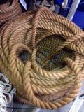 Slut upp av marin- rep Arkivbilder