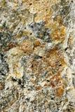 Slut upp av mineral Arkivbild