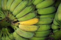 Slut upp av nya bananer Royaltyfri Fotografi