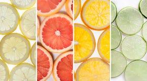 Slut upp av nya citrusa skivor Arkivfoto