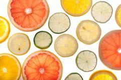 Slut upp av nya citrusskivor med tillbaka ljus Arkivbilder