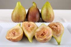 Slut upp av nya fikonträd mogna figs Arkivbilder