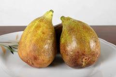 Slut upp av nya fikonträd mogna figs Arkivbild