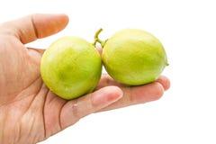 Slut upp av nya limefrukter Arkivfoto