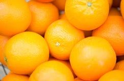 Slut upp av nya mogna saftiga apelsiner Arkivbild
