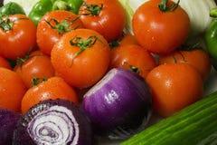 Slut upp av olika färgrika rå grönsaker Royaltyfri Bild