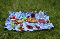 Slut upp av picknicken på en äng Arkivfoto