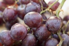 Slut upp av purpurfärgade druvor Arkivfoto