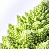 Slut upp av romanescobroccoli fotografering för bildbyråer