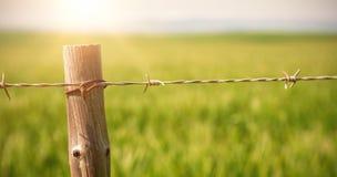 Slut upp av staketet i fält Fotografering för Bildbyråer