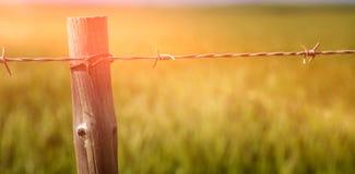 Slut upp av staketet i fält Royaltyfria Foton