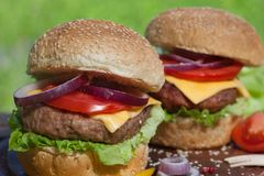 Slut upp av två nya hamburgare Royaltyfria Bilder