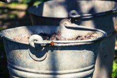 Slut upp av två rostiga järnhinkar i gräs i trädgården Smutsa ner den gråa metalliska hinken med avskräde på gårdsplan på den sol Royaltyfri Bild