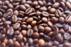 Slut upp bönor på en vit bakgrund Kaffe den hela skärmen för Grillad brunt Massor av i höjdpunktdefinition Royaltyfria Foton