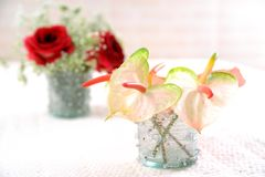 Slut upp buketten av röda blommor royaltyfri bild