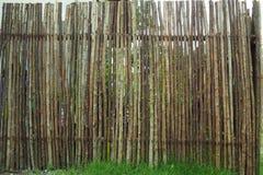 Slut upp dekorativt gammalt tr? av staketv?ggbakgrund royaltyfria foton