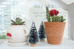 Slut upp den dekorerade kaktuskrukan på den vita hyllan royaltyfria foton