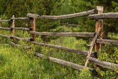 Slut upp det lantliga staketet och vildblommor Royaltyfria Bilder