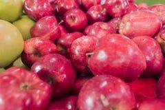 Slut upp det nya röda äpplet på marknaden Royaltyfria Foton