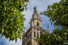 Slut upp det utsmyckade Giralda Klocka tornet av domkyrkan i Seville, Spanien royaltyfria bilder