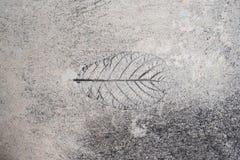 Slut upp fotoet av cementet Royaltyfri Bild